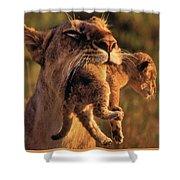 Lion 32 Shower Curtain