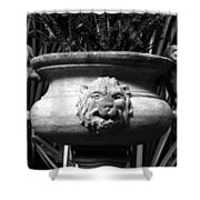 Lion And Serpents Shower Curtain