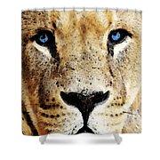 Lion Art - Blue Eyed King Shower Curtain by Sharon Cummings