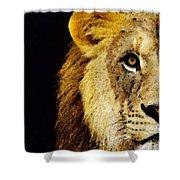 Lion Art - Face Off Shower Curtain