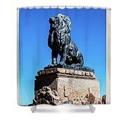 Lion At San Xavier Mission - Tucson Arizona Shower Curtain