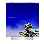 Lion Bluesky Shower Curtain