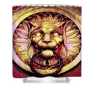 Lion Door Knocker In Dusseldorf, Germany Shower Curtain