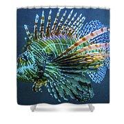 Lion Fish Shower Curtain