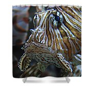 Lion Fish Profile Shower Curtain