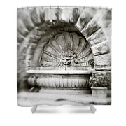 Lion Head Fountain Shower Curtain