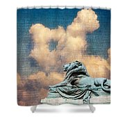 Lion In The Clouds Shower Curtain