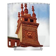 Lion In The Details Shower Curtain
