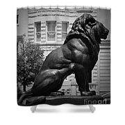 Lion In The Spring Shower Curtain