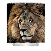 Lion King Of The Jungle 2 Shower Curtain by James Sage