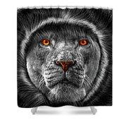 Lion Lady   -3 Shower Curtain