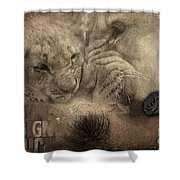 Lion Love Big And Small Shower Curtain