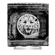 Lion Of Rome Shower Curtain