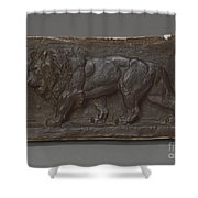 Lion Of The Colonne De Juillet Shower Curtain