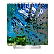 Lion Of The Sea Shower Curtain
