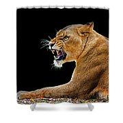 Lion On Black Shower Curtain