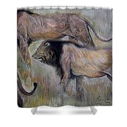 Lion On The Move Shower Curtain