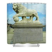 Lion On The North Side Shower Curtain
