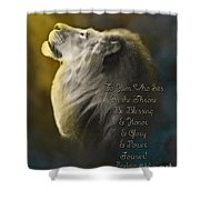 Lion On The Throne In Aqua Shower Curtain by Constance Woods