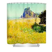 Lion Rock Painted Photo Shower Curtain