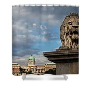 Lion Sculpture In Budapest Shower Curtain