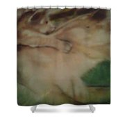 Lioness And Cub Shower Curtain