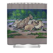 Lioness With Cubs Shower Curtain