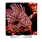 Lionfish Of The Sea Shower Curtain