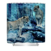 Lions Of The Mist Shower Curtain