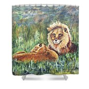 Lions Resting Shower Curtain