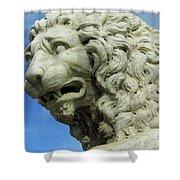 Lions Roar Shower Curtain