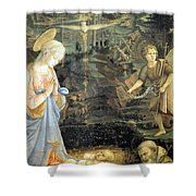 Lippi  Fra Filippo Painting Year1463 Shower Curtain