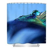 Liquid Fortune Shower Curtain