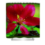 Liquid Line Flower Painting Shower Curtain