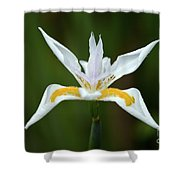 Lirio Alien II Shower Curtain