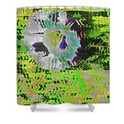 Liseron En Aout  Shower Curtain
