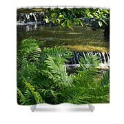 Listen To The Babbling Brook - Green Summer Zen Shower Curtain