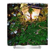 Lit Lamplight Shower Curtain