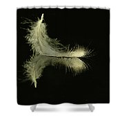 Lite As A Feather Shower Curtain