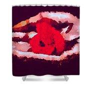 Litt Shower Curtain