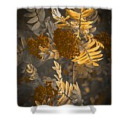 Litthe Creatuions Shower Curtain