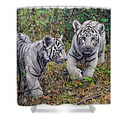 Little And Brave  Shower Curtain