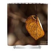 Little Autumn Leaf Shower Curtain