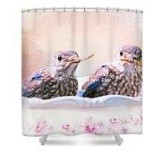 Little Bambinos Shower Curtain
