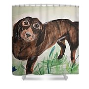 Little Big Man Shower Curtain