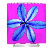 Little Blue Flower On Dark Pink Shower Curtain