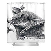 Little Brown Bat Shower Curtain