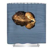 Little Brown Duck Shower Curtain