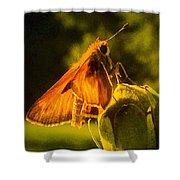 Little Brown Skipper Butterfly Shower Curtain