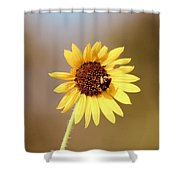 Little Bumble Bee Shower Curtain